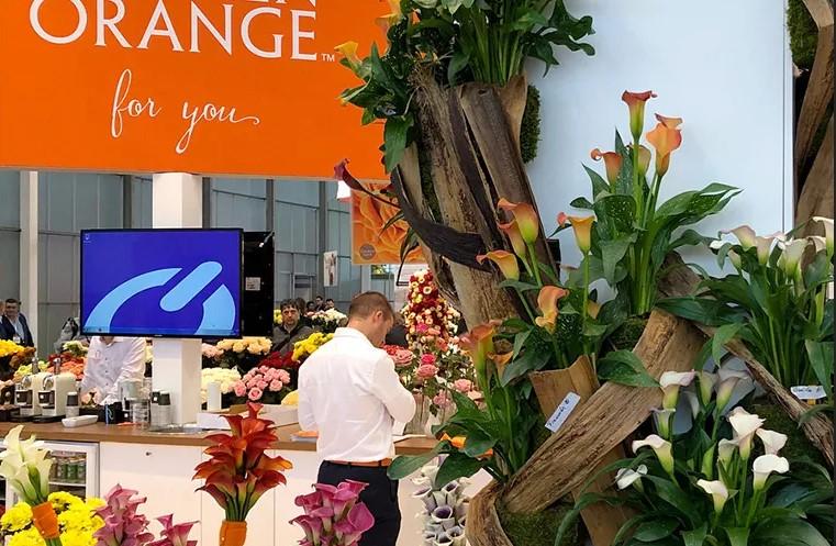 Launch Calla.nl at IPM in Essen